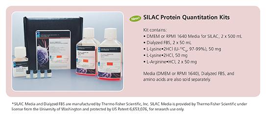 SILAC Protein Quantitation Kits